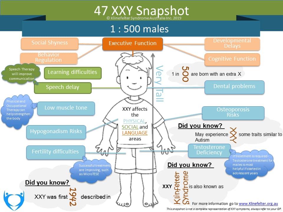 47XXY-Snapshot